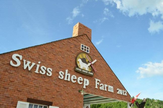 Rest Detail Hotel : Swiss Cheep Farm